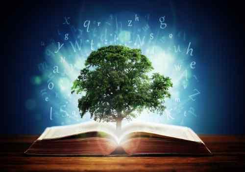 Lezen voor persoonlijke ontwikkeling