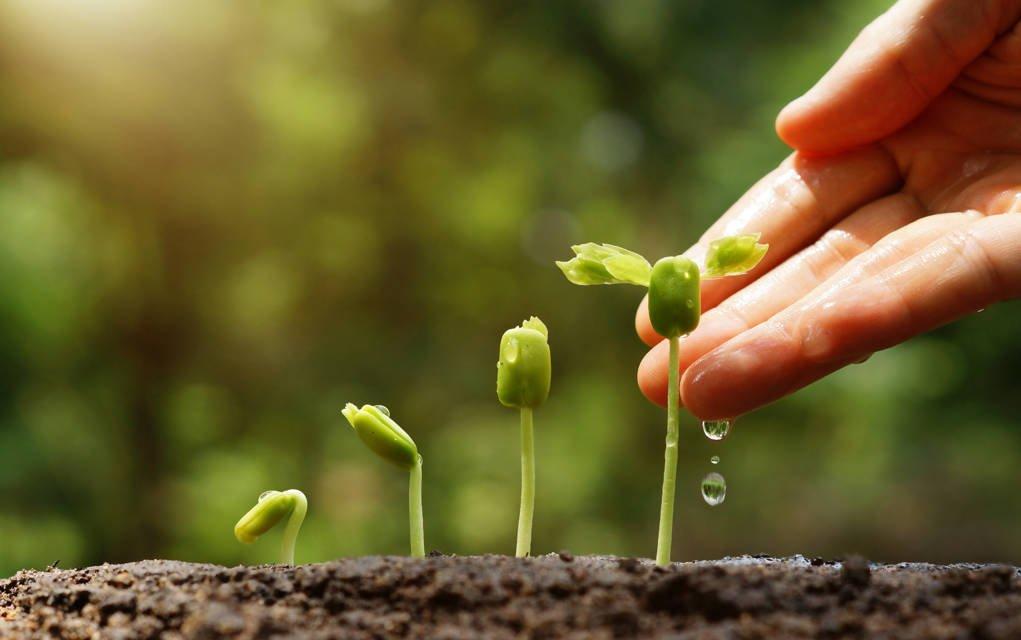 Blijvengroeien.nl het leven is een grote persoonlijke ontwikkeling en ontdekkingsreis. Je hele leven kan je blijven groeien en ontwikkelen