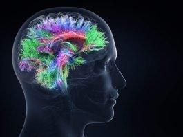 Jim Kwik hersenprestaties optimaliseren het leren te versnellen en het geheugen te verbeteren en 10 inspirerende quotes2