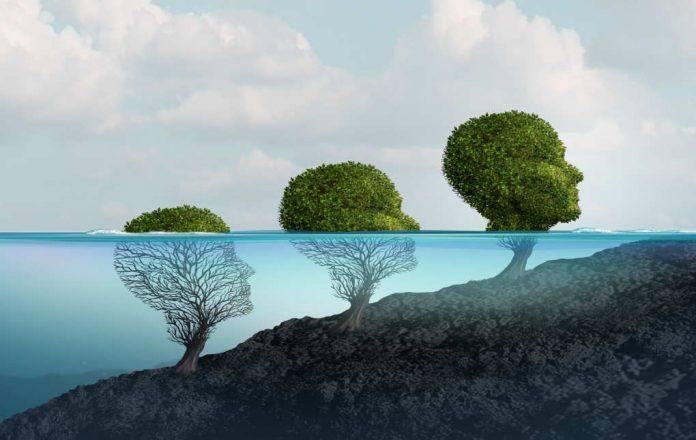 Wat is Persoonlijke Ontwikkeling. En Hoe Werk je aan je Persoonlijke Groei