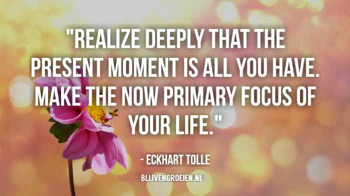 Quotes Eckhart Tolle Realize deeply that the present moment is all you have. make the now primary focus of your life